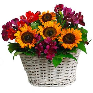 Теплый вечер +30% цветов с доставкой в Екатеринбурге