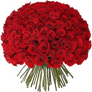 Букет из 101 красной розы с доставкой в Екатеринбурге