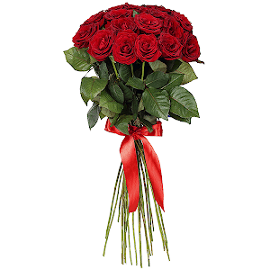 Букет из 21 красной розы - премиум