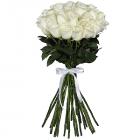 Букет из 25 белых роз - премиум